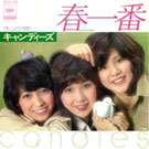Jacket of Candies - Haruichiban